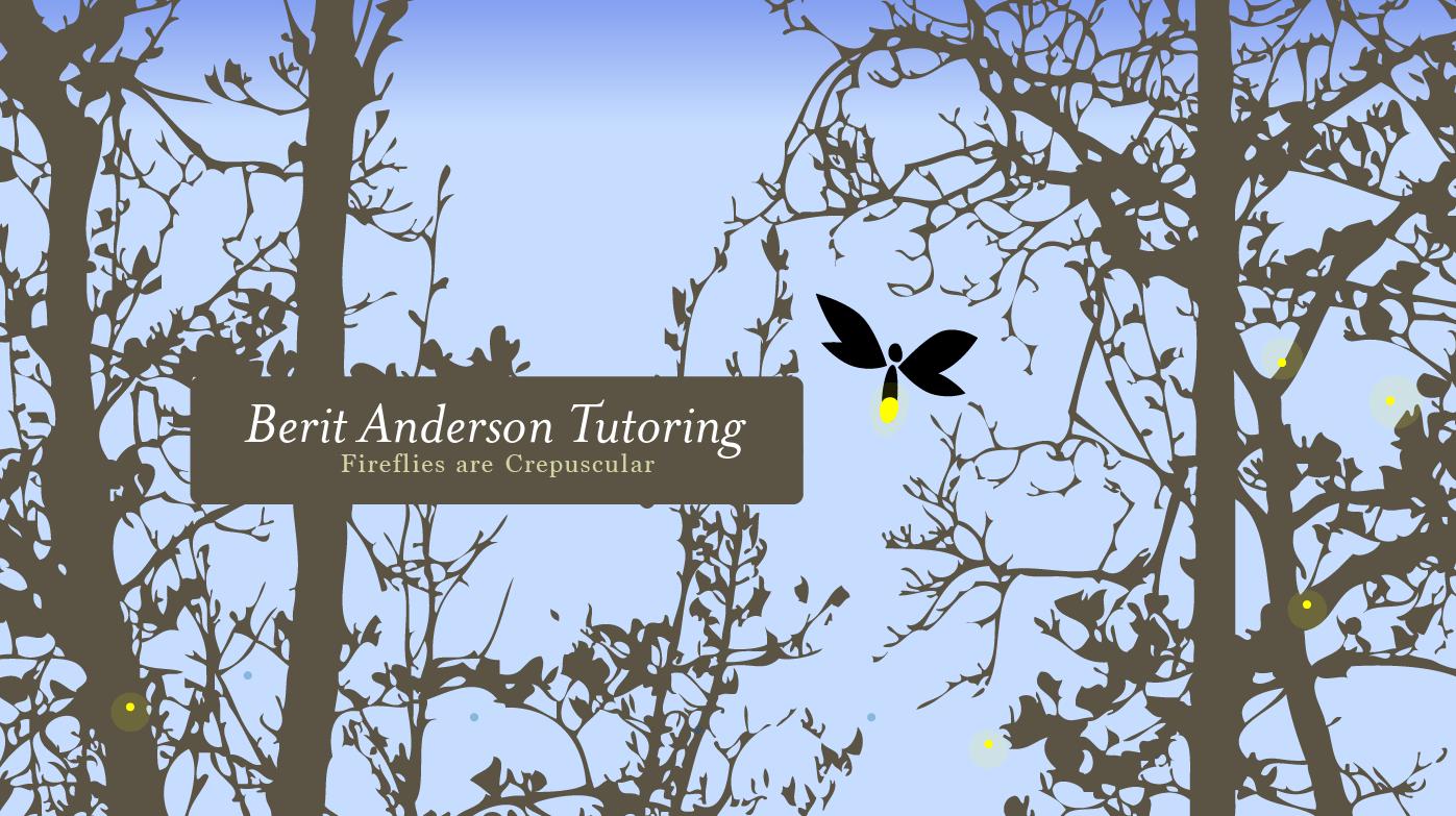 berit-anderson-tutoring_identity
