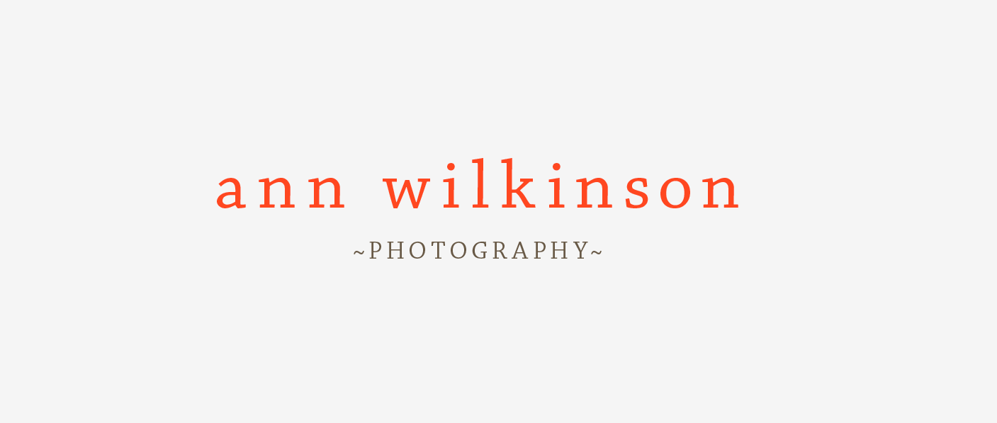 Ann Wilkinson Photography Logo by mimoYmima